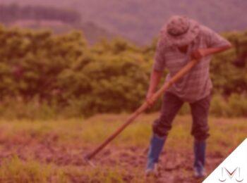 #pratodosverem: artigo: O que é aposentadoria híbrida? Descrição da imagem: um agricultor esta cuidando da plantação. Cores na imagem: verde, marrom, azul e preto.
